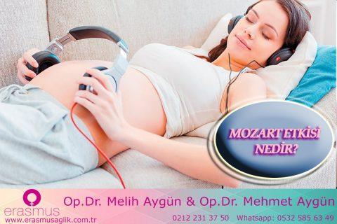 Bebeklerin Zekasını Geliştiren Müzik (Mozart Etkisi)