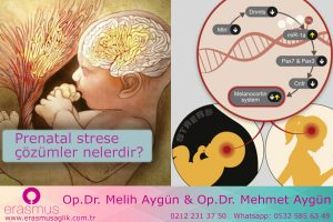 Prenatal(gebelik süresince) strese karşı çözümler nelerdir?