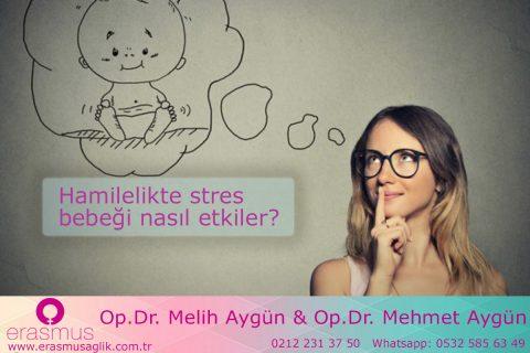 Doğum öncesi stres ana rahmindeki bebeğin beynini etkileri