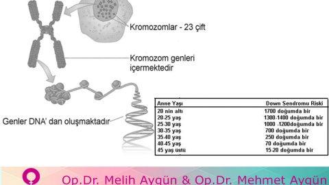 Anne karnındaki bebeğin kromozom hastalıkları tespit edilebiliyor