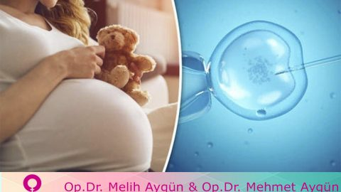 Tüp bebek tedavisi sayesinde sekiz milyondan fazla bebek dünyaya geldi